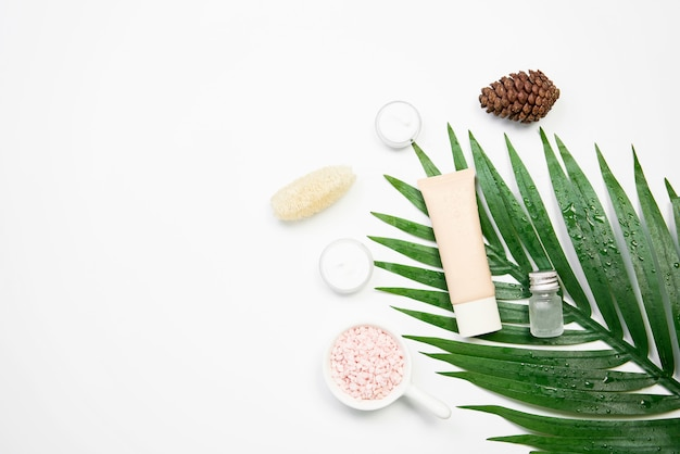 Mockup of cosmetic cream bottle, blank label package and ingredients on a green leaves background. Premium Photo