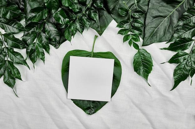 側面、フラットレイアウト、テキスト、上面図、製品バナー、自然概念のためのスペースに緑の葉と繊維の背景に白い空白のカードのモックアップ。 Premium写真