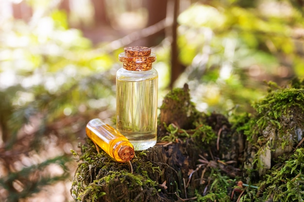 Modern apothecary. natural spruce oil on a wooden surface in the forest among firs. Premium Photo