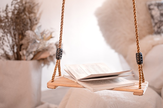 Modern cozy interior of the living room with a hanging swing. Free Photo