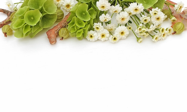 花の組成物。花で作られたボーダー、molucellaの写真付きスタイル Premium写真