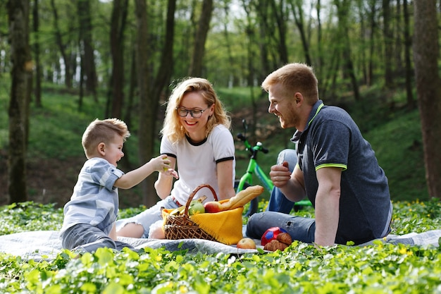 Mom, dad and a little boy taste apples sitting on the grass during a picnic in the park Free Photo