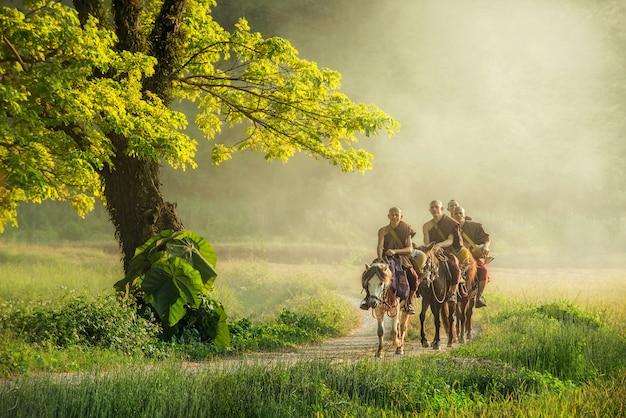 茶色のローブの僧monが馬に乗って施しを頼む(タイでは見えない) Premium写真
