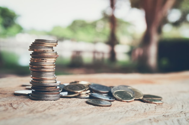 Money, coins growing concept and the financial goals success. Premium Photo