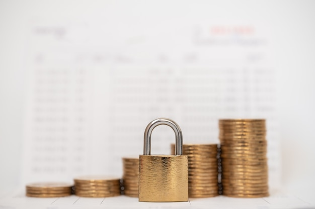 Money and security concept Premium Photo