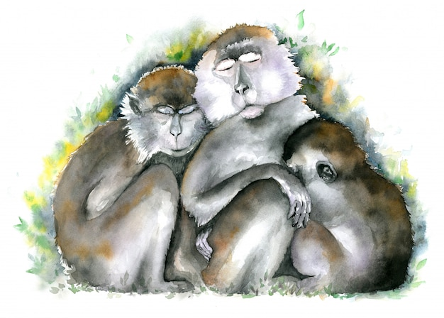 Premium Photo Monkey Family Three Brown Monkies Sitting Together With Closed Eyes Watercolor Illustration These are just off the top of my head, but there are many other examples. https www freepik com profile preagreement getstarted 4288447