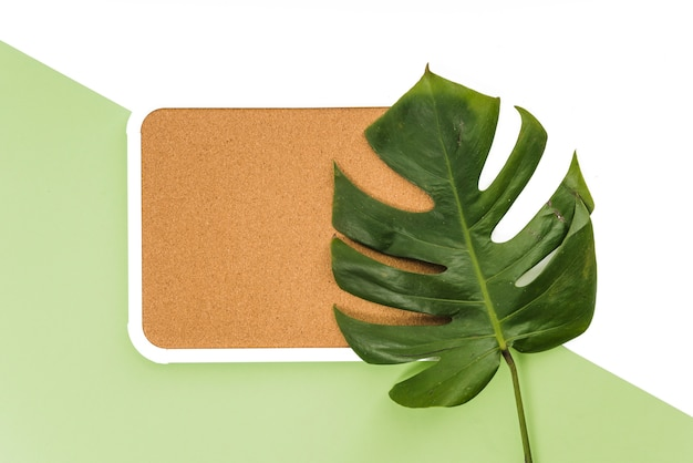 Monstera leaf on board Free Photo