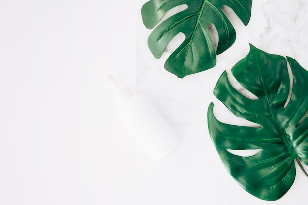 Monstera leaves or swiss cheese leaves with dispenser bottle on white backdrop Free Photo