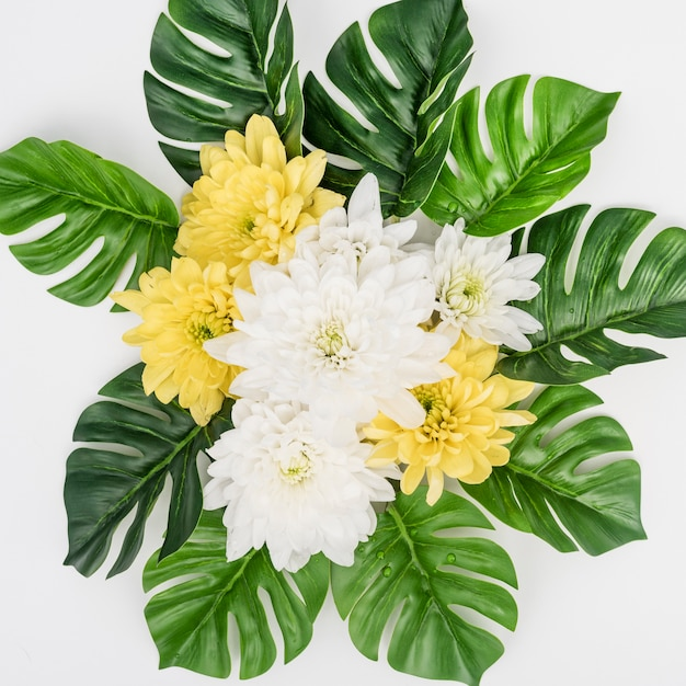 Monstera leaves and white with yellow flowers Free Photo