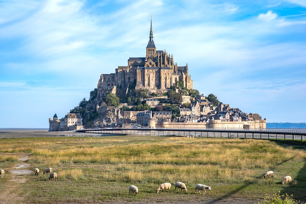 Mont saint michel and the abbey with the sea at low tide and obey grazing Premium Photo
