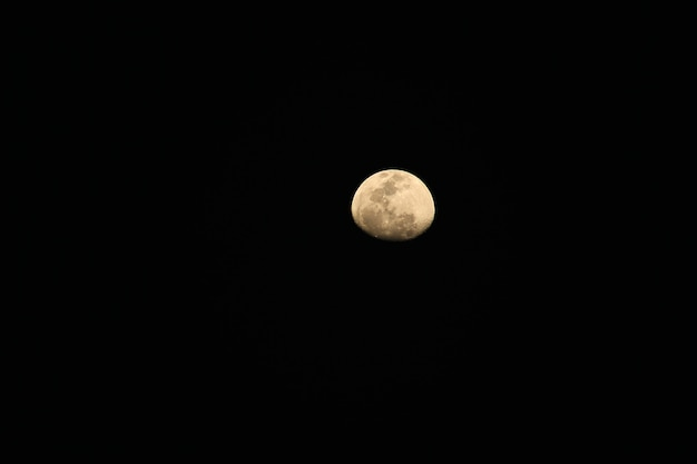 The moon at night is not full. Premium Photo