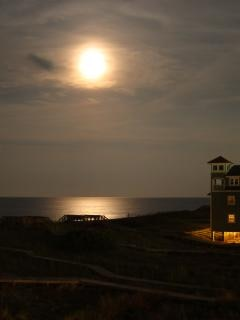 moonlight  night Free Photo