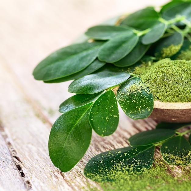 Порошок моринги (moringa oleifera) в кокосовой миске с оригинальными свежими листьями моринги Premium Фотографии