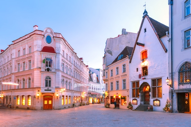 Morning decorated and illuminated christmas street in old town of tallinn, estonia Premium Photo