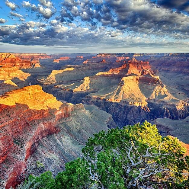 米国アリゾナ州グランドキャニオンの朝の光 Premium写真
