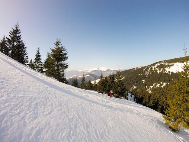 The most beautiful ukrainian nature Premium Photo