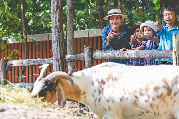 Мать и дети, глядя коза ест траву в ферме Premium Фотографии