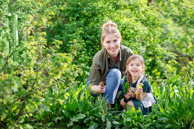 Mother and daughter in the garden harvest. a young blonde woman and a little girl with light hair. Premium Photo