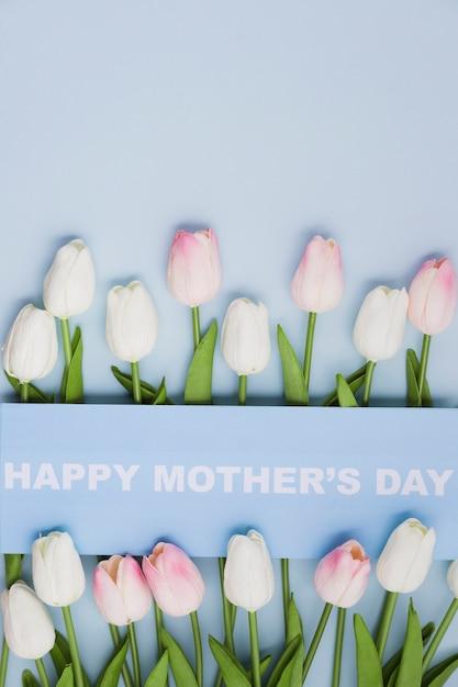 День матери с тюльпанами Бесплатные Фотографии