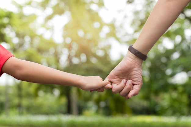 Mother and son hooking up finger make their promise while walking in the park Premium Photo