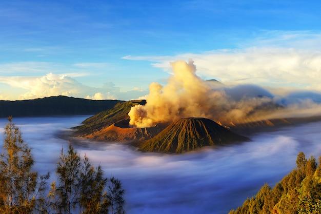 Mount bromo, active volcano during sunrise Premium Photo