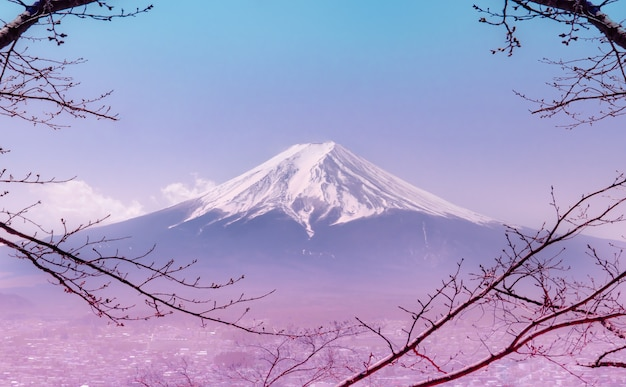 Mountain fuji in winter framed by dry fall tree in pink color Premium Photo