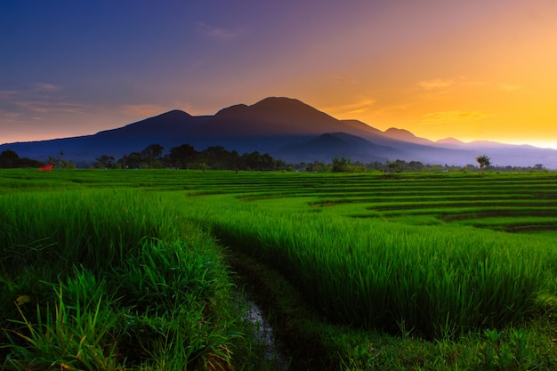 Mountain in the morning, beauty color in the sky indonesia Premium Photo