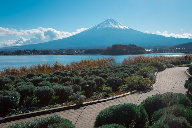 Mountain mt. fuji and lake in japan with tree and road Premium Photo