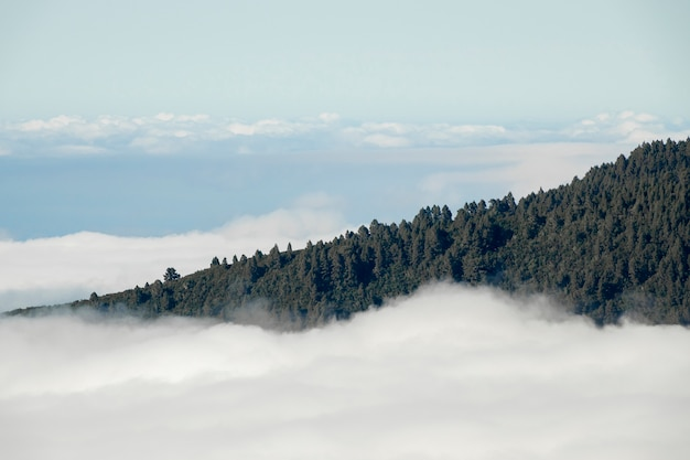 Mountain peak above the clouds Free Photo