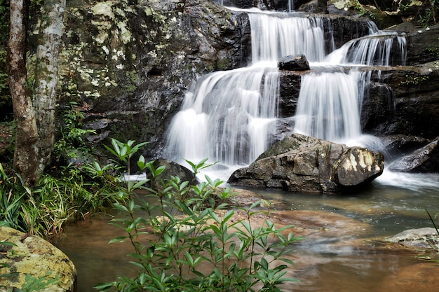 Mountain river background with small waterfalls in tropical forest. Premium Photo