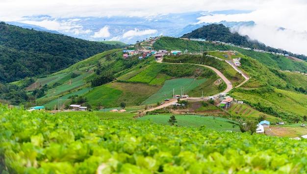 Mountain road at ( phu tubberk) in phu hin rong kla national park Premium Photo