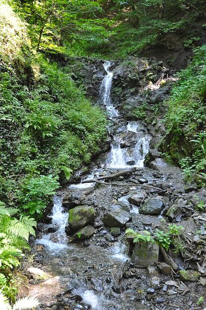 Mountain waterfall in krasnaya polyana, sochi, russia Premium Photo
