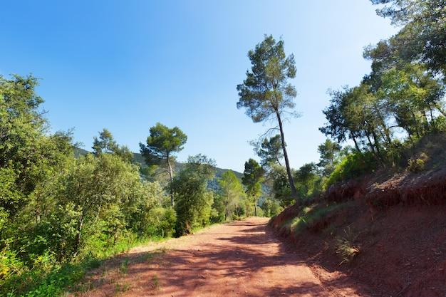 Mountainous road and pine trees. montseny Free Photo