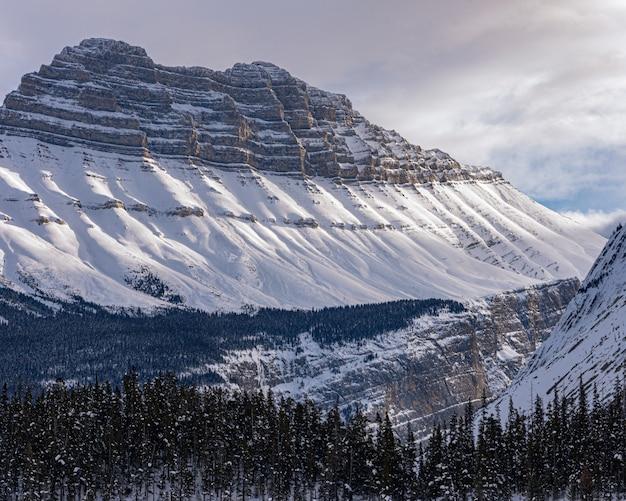 山と森-涼しいのに良い 無料写真