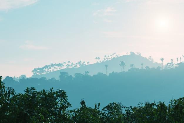 日没時の山と木のシルエット、セイロン Premium写真