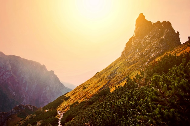 Mountains nature landscape. Free Photo