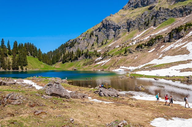 Mountains and trees surrounded by the lake lac lioson in switzerland Free Photo