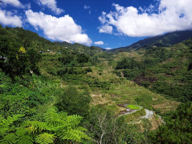 Mountains and valleys in banaue, philippines Premium Photo