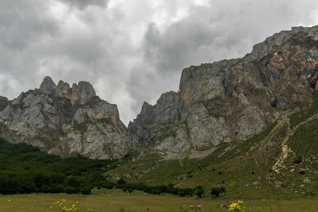 In the mountains Premium Photo