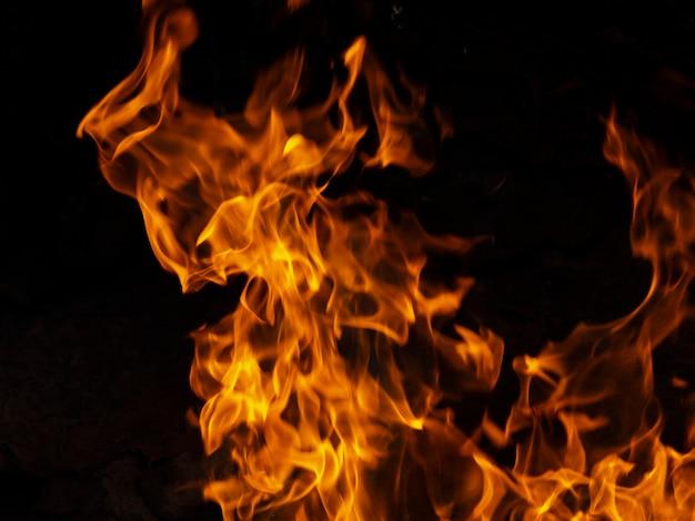 黒の背景に活気のある火を移動 Premium写真