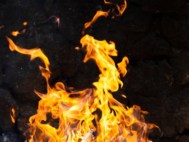 Moving vibrant flames on black background Premium Photo