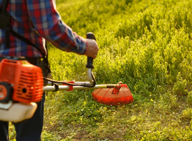 Mowing trimmer - worker cutting grass in green yard at sunset. Premium Photo