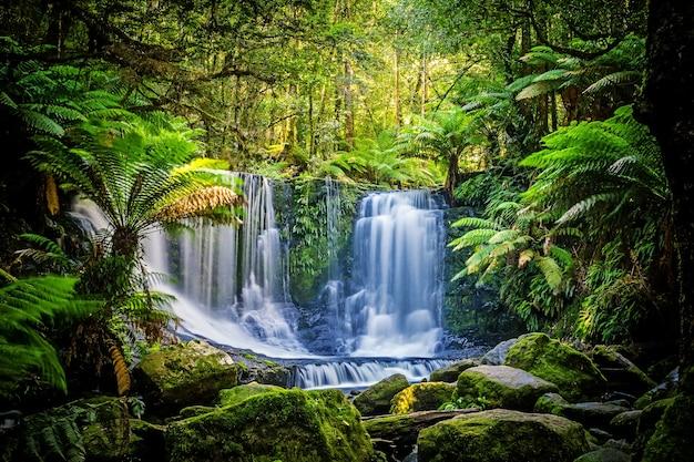 Водопад «подкова» в национальном парке mt field, тасмания, австралия Premium Фотографии