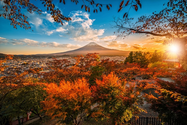 Mt. fuji with red leaf in the autumn on sunset at fujiyoshida, japan. Premium Photo
