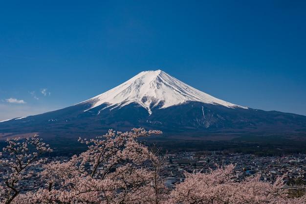 Mt. фудзи в весеннее время с вишней в кавагутико фудзиёсида, япония. Premium Фотографии