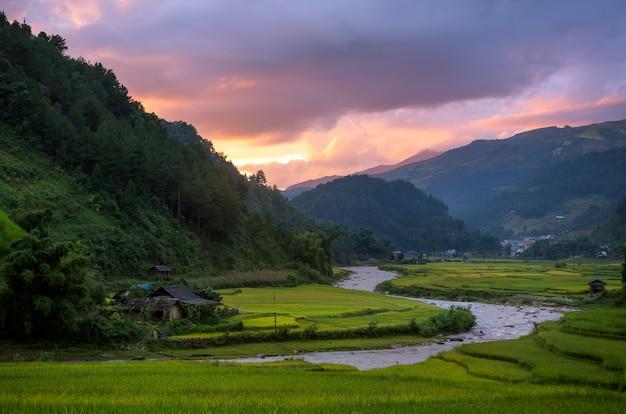 Mu cang chai Premium Photo