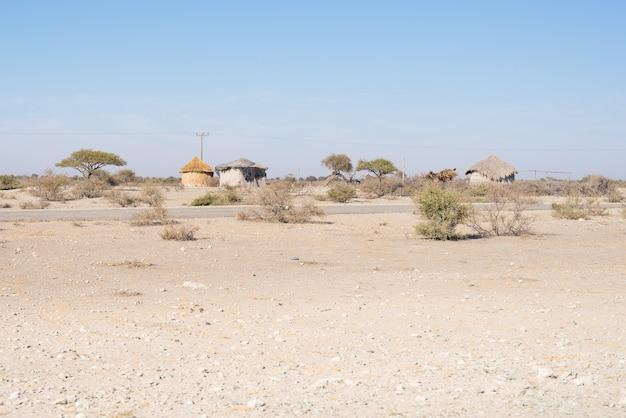 茂みに茅葺き屋根の泥わらと木造の小屋。ナミビア、アフリカ。 Premium写真