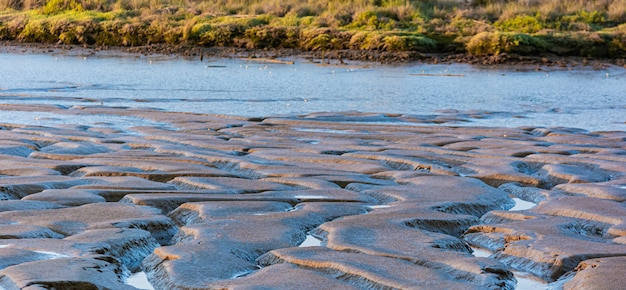 泥のテクスチャ、チャネルのある川 Premium写真