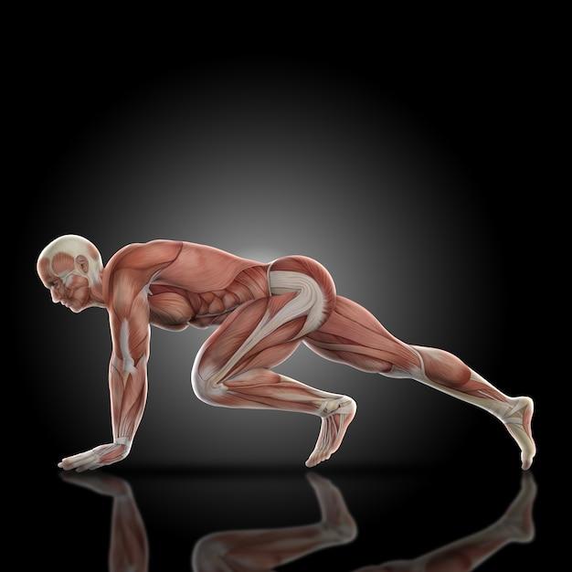 Muscular man doing legs Free Photo