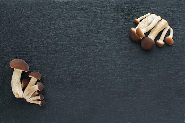 Грибы, опята на черном фоне. черная каменная доска .. Premium Фотографии